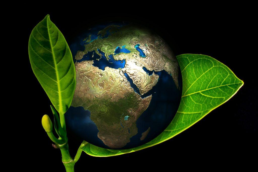 Aktuelle Marktübersicht zu ethisch-ökologischen Sparanlagen