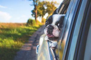 Sicher unterwegs: Was beim Überholen auf der Autobahn wichtig ist