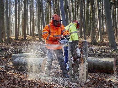 Berufsunfähigkeitsversicherung für Forstwirt