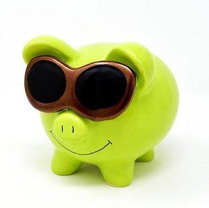 Klimafreundliche Geldgeschäfte - Finance for Future