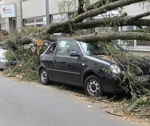 Rechtsfrage: Unfall durch Sturmböe – welche Versicherung zahlt?
